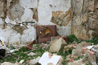Ruinas y resto de mobiliario
