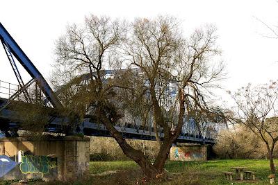 Puente de La Barca: pintadas