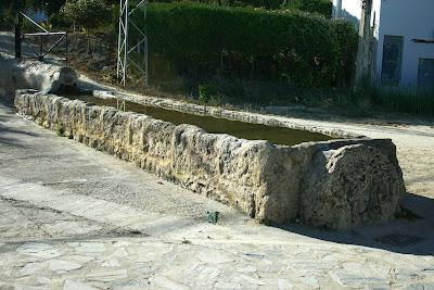 Fuente manantial(Bornos)