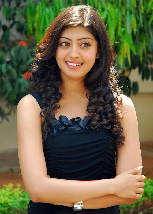 praneetha exclusivie telungu movie bava praneetha actress pics