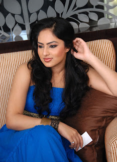 Nikesha Patel Latest Photo Stills 14