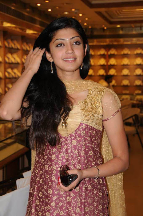 praneetha chandana brothers designer bridal party collection launch unseen pics