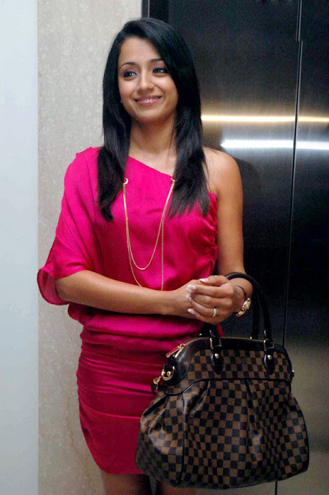 trisha spotted in pink at a event unseen pics