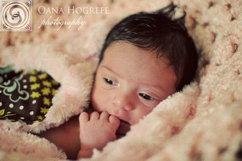 best newborn photographers atlanta metro