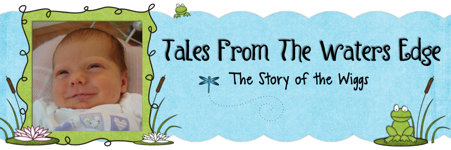 Tales from Waters Edge