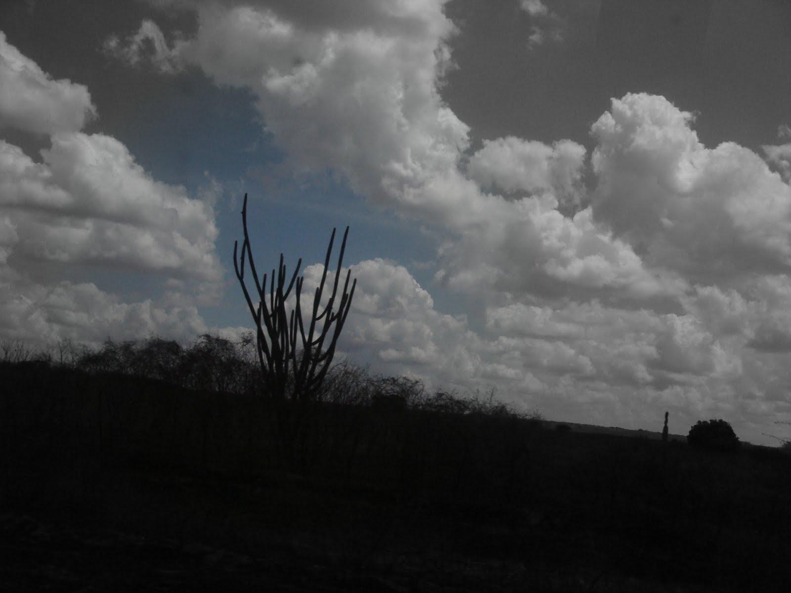 estrada afora