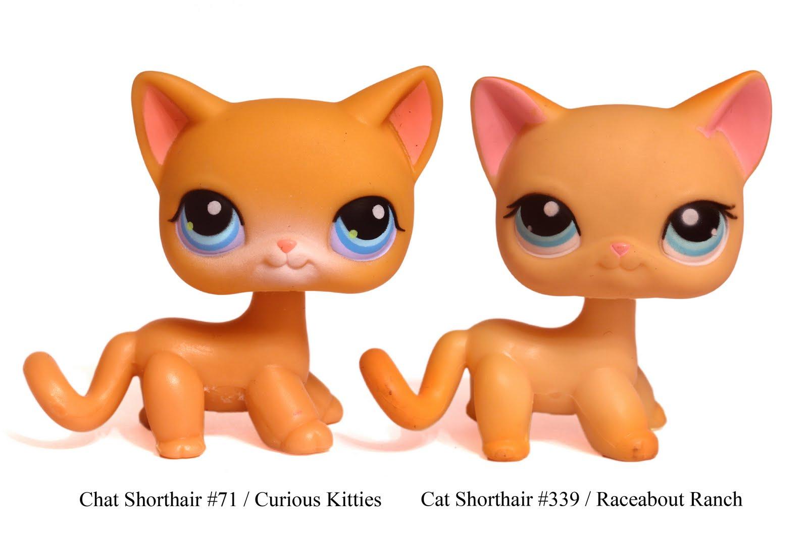 Twins+Cats+02.jpg