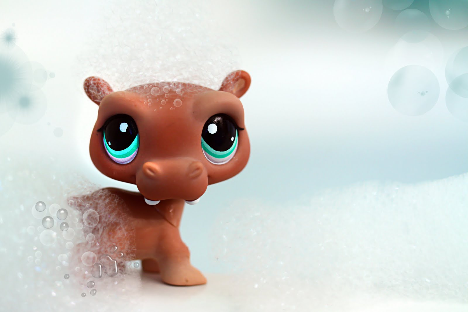 Littlest Pet Shop Hippo Nicole`s LPS blog - Li...