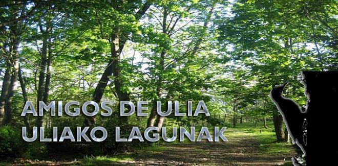 Amigos de Ulía - Uliako Lagunak
