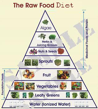 Raw Food Diet Menu