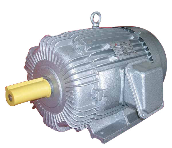 What are the advantages of wound rotor over a squirrel for Advantages of ac motor
