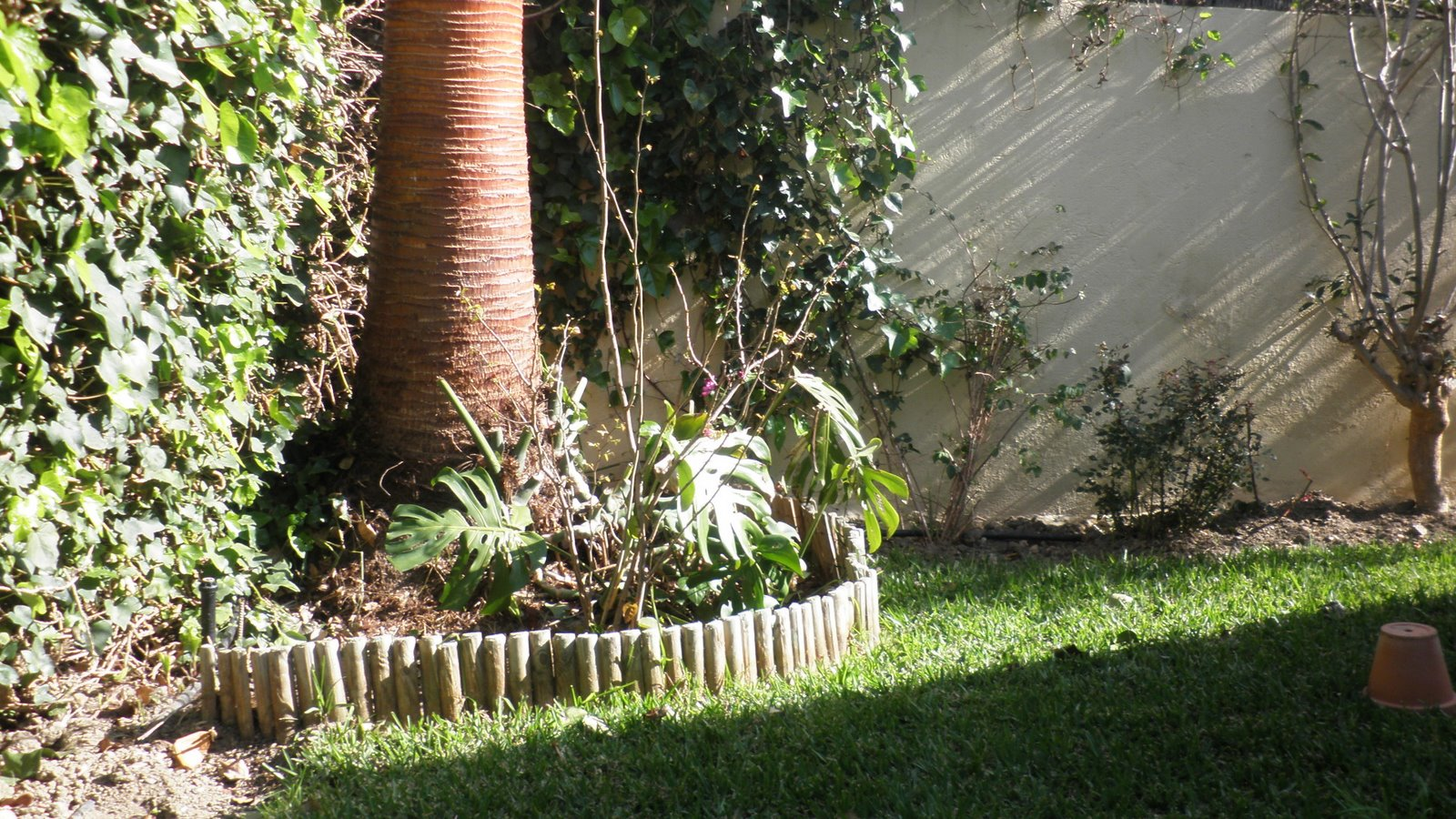 Jardinbio jardin peque o comienzo de decoracion 2 for Decoracion para jardin pequeno