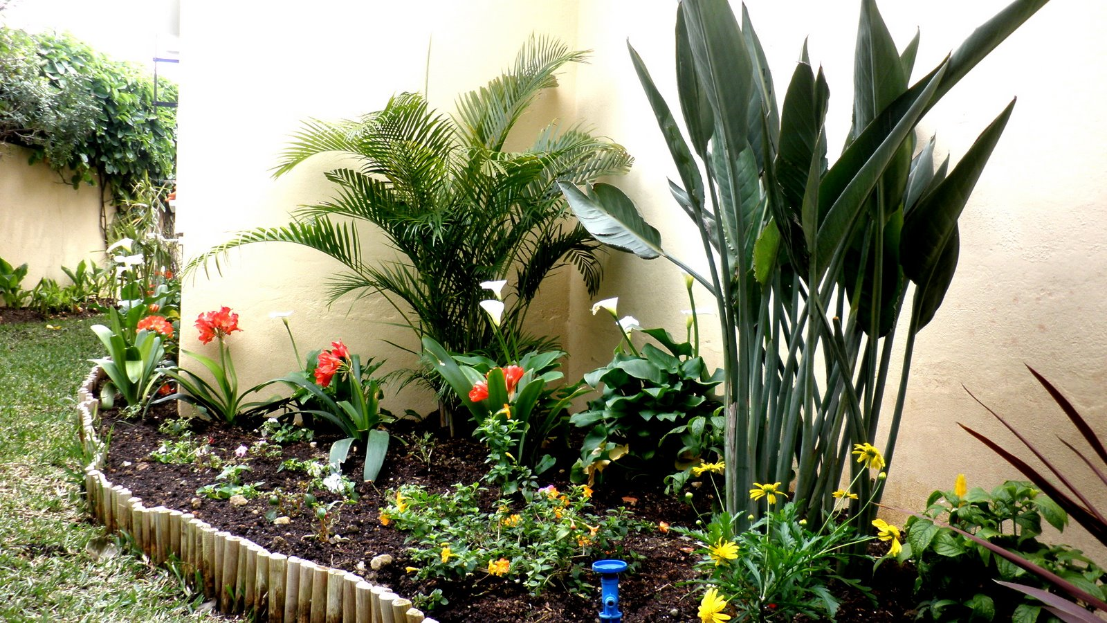 Jardinbio jardin peque o decoracion terminada iii for Como decorar un jardin pequeno