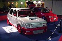 """""""Fiat -147 tuning"""""""