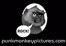 Punkmonkey Logo