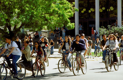 Image of bicyclists on the campus of UC Davis