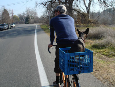 Image of bicyclist with dog near Chico, California