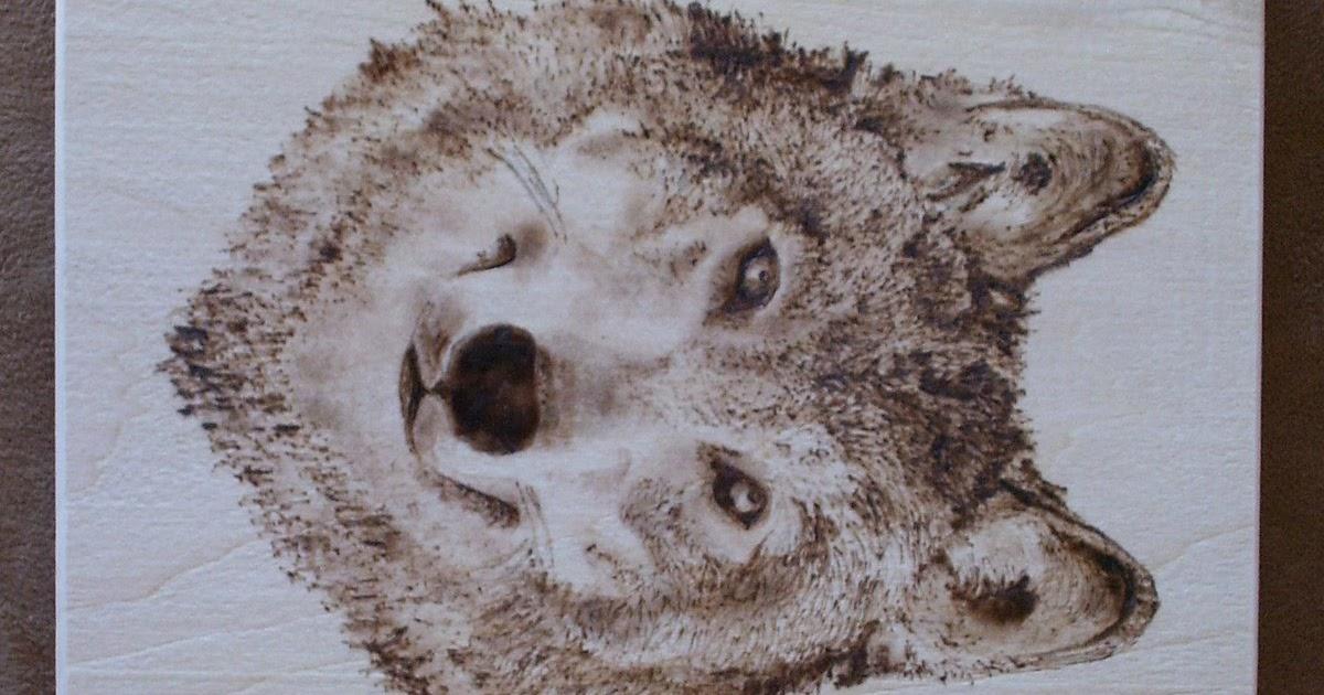 My Savvy Art Studio: Wolf Wood burning Set Golden Retriever And Baby