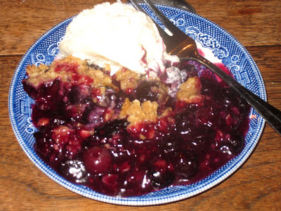 Aunt Stacie's blueberry crumble