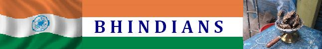 Bhindians [india, hindus, shining, truth, gay]
