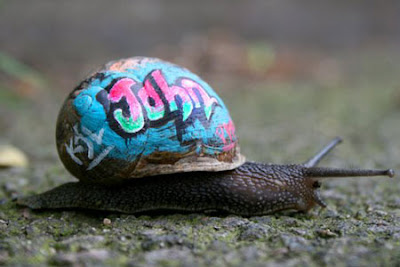 Unique Alphabet Graffiti Art On Slugs