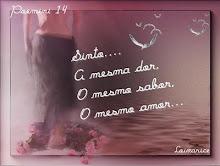 Poemini 14