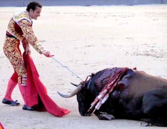the senseless torture of animals during bullfighting At their worst, spaniards–and the moronic tourists who flock to their bloody rites–can be bloodthirsty barbarians, dionysian devotees who succumb to mystical rapture during the torture and killing of animals.