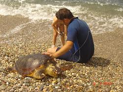 Να ενυδατώνουμε την χελώνα
