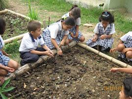 La practica Rural en el Triunfo