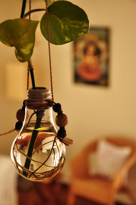 rang decor interior ideas predominantly indian diy bulb plant