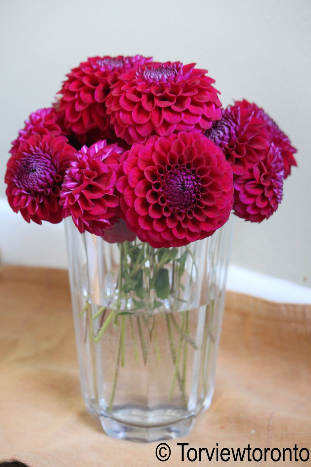 how to make dahlias last in a vase