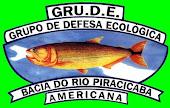 GRU.D.E