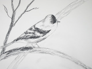 charcoal sketch of a bird by american artist atul pande
