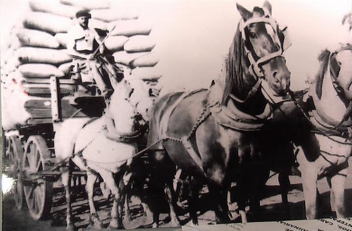 AÑO 1930