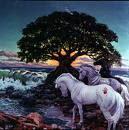 Horoscopia - Blog de invenstigación de astrologia y otros temas de susana colucci