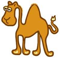 La historia del árabe y el camello en Horoscopia de susana colucci Para reflexionar