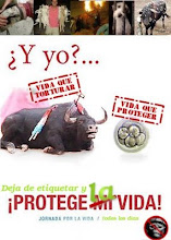 Protege todas las vidas