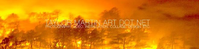 TAYLOR MARTIN ART DOT COM