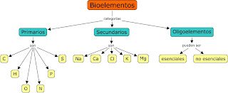 external image bioelementos.jpg