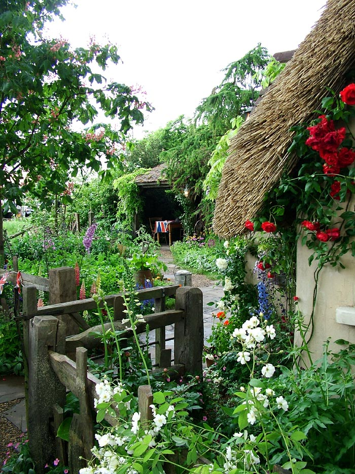 Dreams happy things in a cottage flower garden - Cottage garden ...
