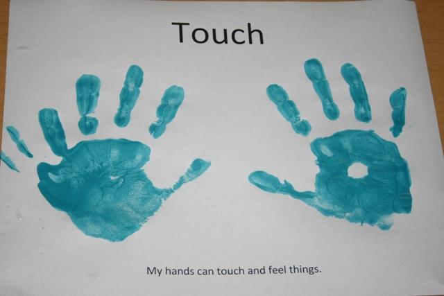 Sense Touch Sense of Touch