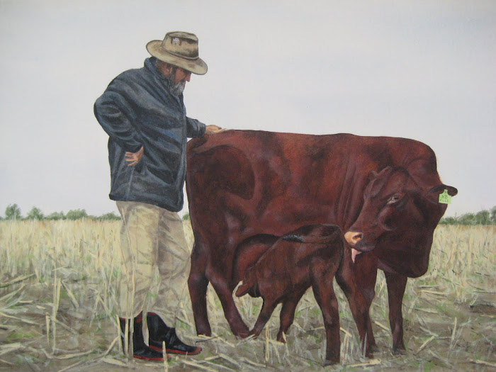 John and 'Elle' with her first Calf