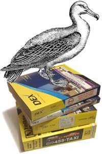 Phone book stack with albatross perched on top