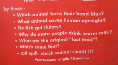 Sign with a list of questions, the first on reading Which animal turns their head blue?