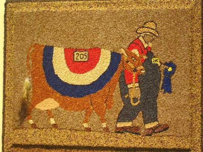 Oversized cow with a red white and blue blanket, being led by an elderly farmer in overalls