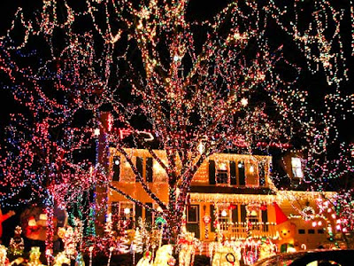 Festooned Christmas lights all over trees and house