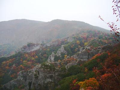 香川県・小豆島 寒霞渓の紅葉と黄砂