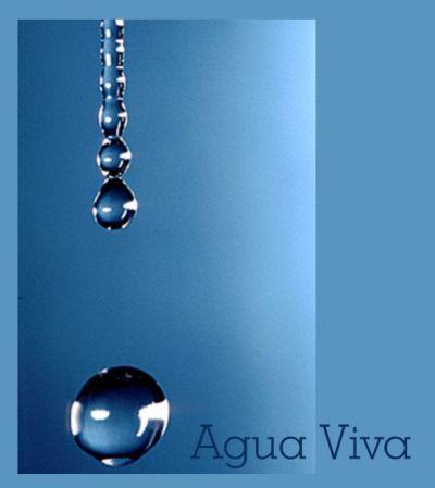 importancia del agua. Un vaso de agua calmará el