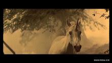 Unicornio B Runner