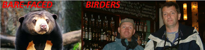BARE-FACED BIRDERS